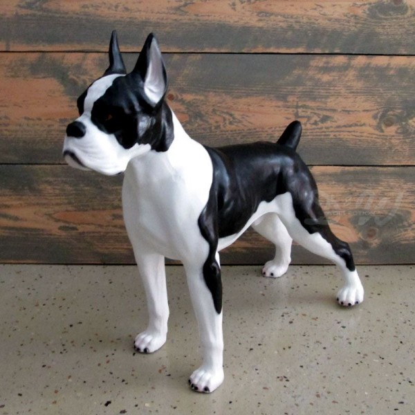 französische Bulldogge Hund schwarz-weiß (klein)