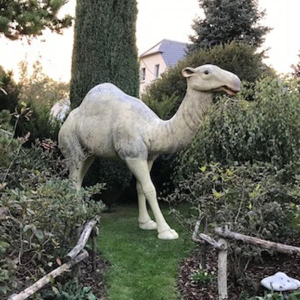 Kamel Dromedar stehend (lebensgroß)