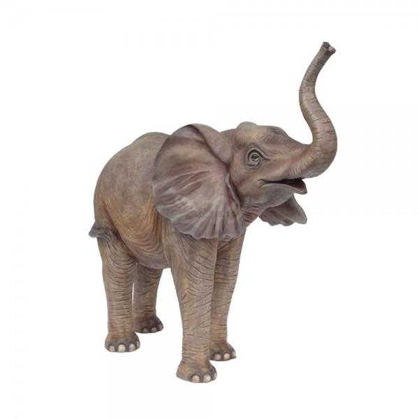 Elefant stehend Rüssel oben (groß)