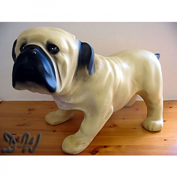 englische Bulldogge Hund braun (klein)