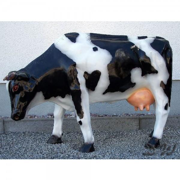 Kuh Amalia schwarz-weiß glatte Oberfläche grasend (klein)