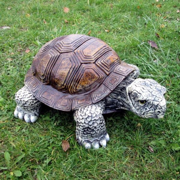 Schildkröte (mittel)