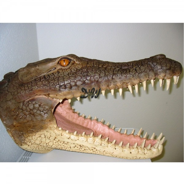 Alligator Krokodil-Kopf (groß)