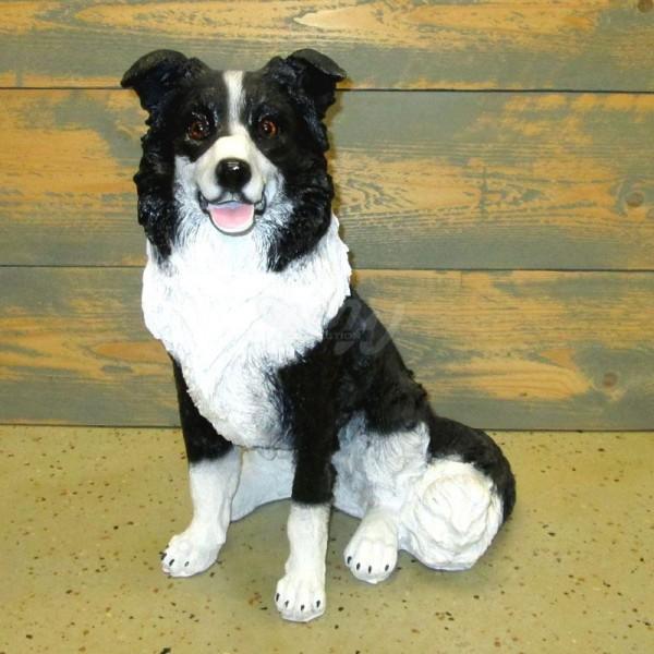 Border Collie Hund schwarz-weiß sitzend (mittel)