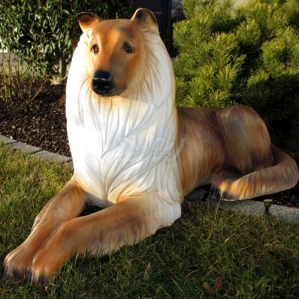 Collie Hund liegend (lebensgroß)
