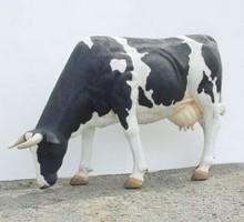 "Kuh Berta ""grasend"" schwarz-weiß (lebensgroß)"