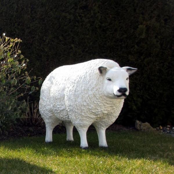 Schaf Biggi Merino weiß strukturiert Patina (lebensgroß) Kopf gerade