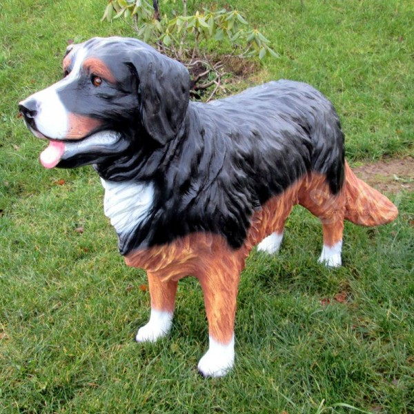 Berner Sennenhund stehend (lebensgroß)