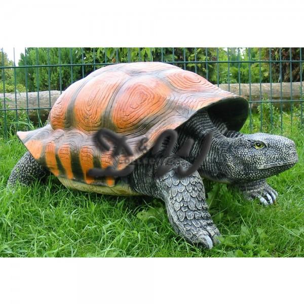 Schildkröte (groß)