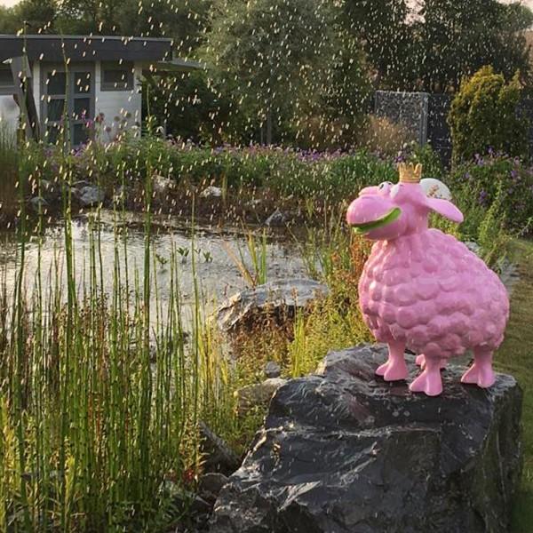 D&W Collection Deko Werbe Figur ORIGINAL Wölkchen Schaf pink mit goldener Krone Werbung