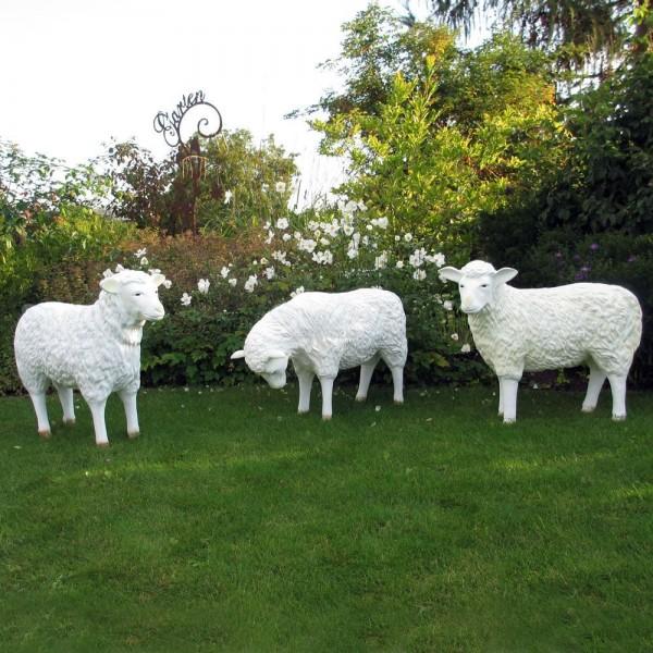 Schaffamilie weiß strukturiert Patina 3 Schafe Kopf gerade, Kopf unten & Kopf zur Seite
